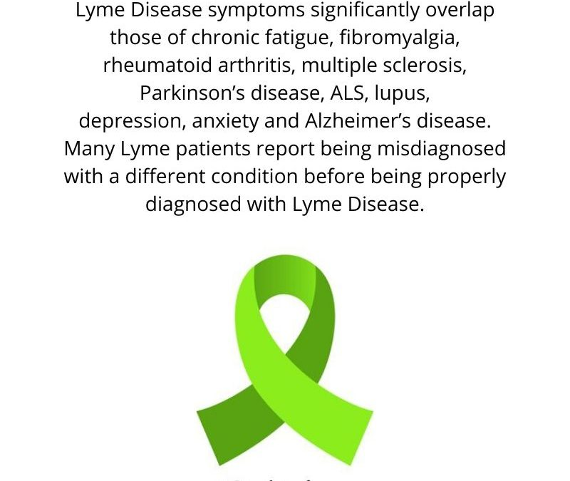 Lyme Disease in Canada – an Educational Easy-to-Read Informational Report